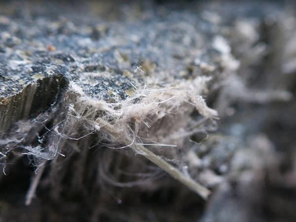 smaltimento-amianto-capannoni-parma